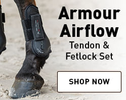 Armour Airflow Tendon & Fetlock Boot Set
