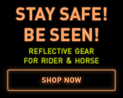 reflective gear for rider and horse